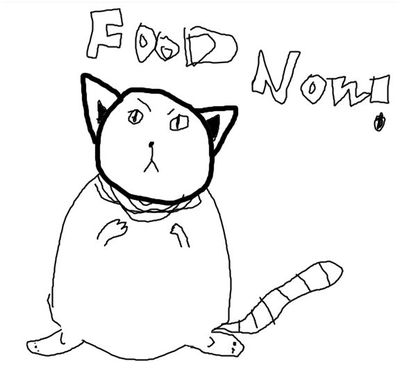 cat wants food YUM